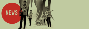 Newsletter The Kinks