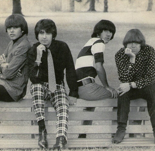 The Standells Garage Punk Psychedelic