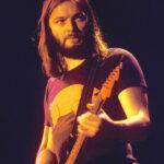 Pink Floyd David Gilmour Animals Pig Progressive Rock T-Shirt